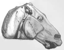 Horse Roman Sculpture sketch